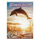 """Тетрадь для нот, 8 листов """"Музыка моря"""", обложка мелованный картон, микс"""