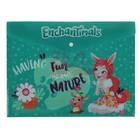 Папка-конверт на кнопке А4 180мк Mattel Enchantimals