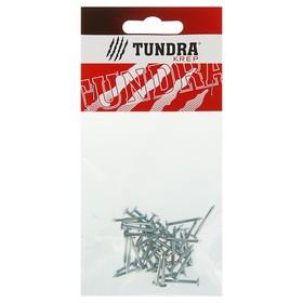 Гвоздь толевый TUNDRA krep, 2х20 мм, оцинкованный, в упаковке 40 шт. Ош