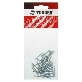 Гвоздь толевый TUNDRA krep, 2х25 мм, оцинкованный, в упаковке 40 шт. Ош