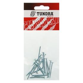 Гвоздь толевый TUNDRA krep, 2.5х32 мм, оцинкованный, в упаковке 20 шт. Ош