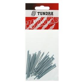 Гвоздь финишный TUNDRA krep, 2х50 мм, оцинкованный, в упаковке 40 шт. Ош