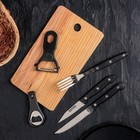Набор 5 пр: 2 ножа 8,5/10,5 см, ножницы, открывашка, овощечистка, цвет черный