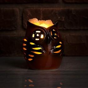 Соляной светильник 'Сова малая', керамика, 13 х 20 х 9 см Ош