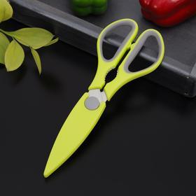 Ножницы кухонные 'Спорт'  24 см, цвета МИКС Ош