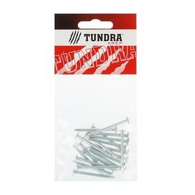 Гвоздь толевый TUNDRA krep, 3х40 мм, оцинкованный, в упаковке 20 шт. Ош