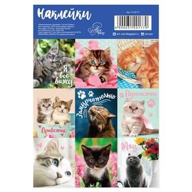 Наклейки бумажные «Кошки», 11 х 16 см Ош