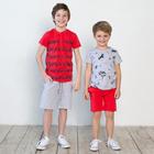Футболка для мальчика, рост 104 см, цвет серый меланж 122-310-22