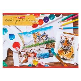 Альбом для рисования А4 40 листов 'Краски и кисти' обложка картон хромэрзац Ош
