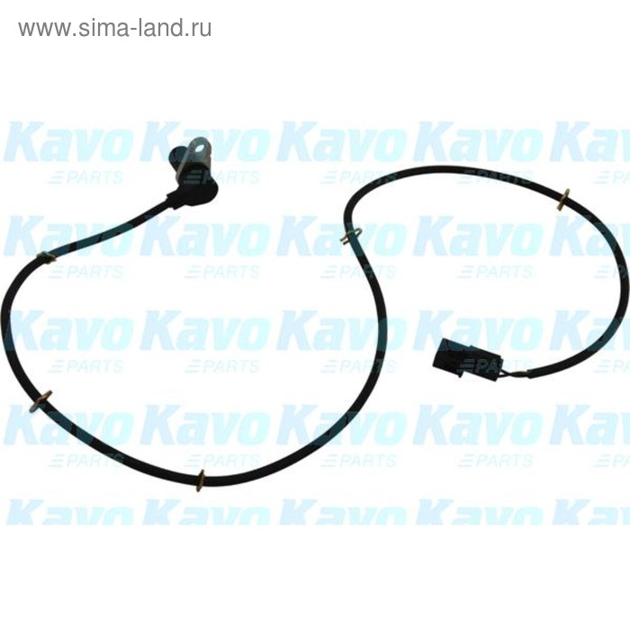 Датчик АБС Kavo Parts BAS-5509