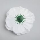 Белый цветок для декора