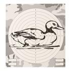 """Мишень """"Утка"""" для стрельбы из пневматического оружия,14 х14 см, дистанция 10 метров"""
