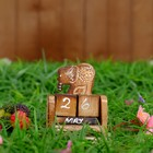 "Деревянный календарь с кубиками ""Слон"" 12х6х3,5 см"