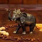 "Сувенир бронза ""Королевский слон"" 15,5х7х12 см"