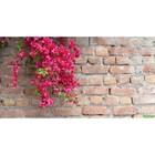 Фотосетка «Красные цветы», 300 х 158 см, с фотопечатью