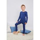 Комплект для мальчиков(джемпер,кальсоны), рост 116 см, цвет Синий