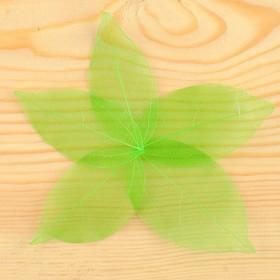 Сухие листья, (набор 5 шт), размер 1 шт 8*5, цвет зеленый Ош