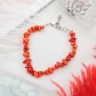 Коралл оранжевый