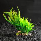 Растение искусственное аквариумное на подставке под камень, 17 х 14 х 16 см