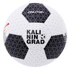 Мяч футбольный KALININGRAD р.5, 32 панели, PVC, 320 гр, камера бутил