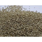 Семена Тимофеевка луговая, 40 кг