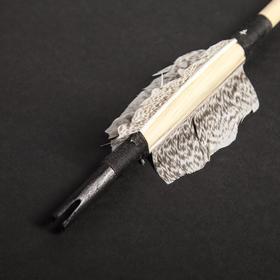 Стрела для лука деревянного 'Традиционный и фигурный', массив сосны, 75 см Ош