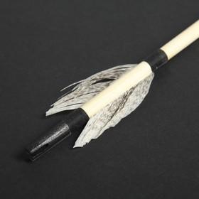 Стрела для лука деревянного 'Подростковый', массив сосны, 55 см Ош