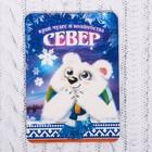 """Магнит с глиттером """"СЕВЕР"""" (медвежонок), 6,6 х 9,2 см"""