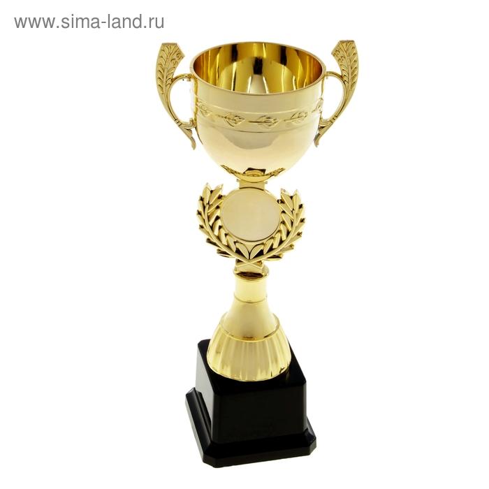 Кубок спортивный 017