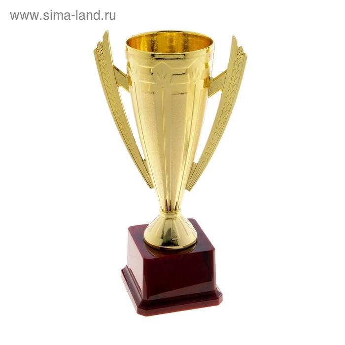 Кубок спортивный 028