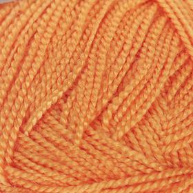 Пряжа 'Etamin' 100% акрил 180м/30гр (446 оранжевый) Ош