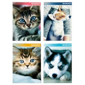 Блокнот А6, 40 листов на скрепке Calligrata «Котята и щенята», картон хром-эрзац Ош