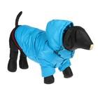 Куртка супертеплая на синтепоне, размер L (ДС 39 см, ОГ 50 см), голубая