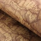 """Бумага упаковочная """"Карта"""", цвет коричневый, 52 х 75 см"""