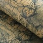 """Бумага упаковочная """"Карта"""", цвет зелёный, 52 х 75 см"""