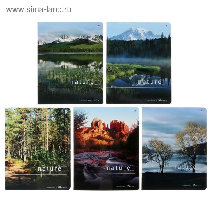 """Тетрадь 48 листов клетка """"Природа"""", картонная обложка, лак, 5 видов МИКС"""