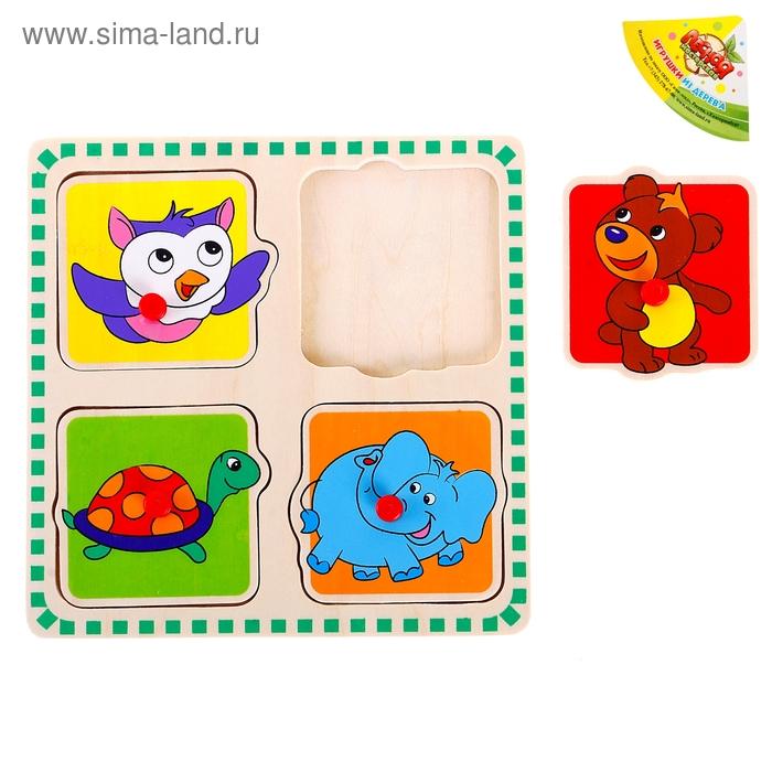 """Рамка-вкладыш в рамке с цветными квадратами """"Живая природа"""", 4 элемента"""