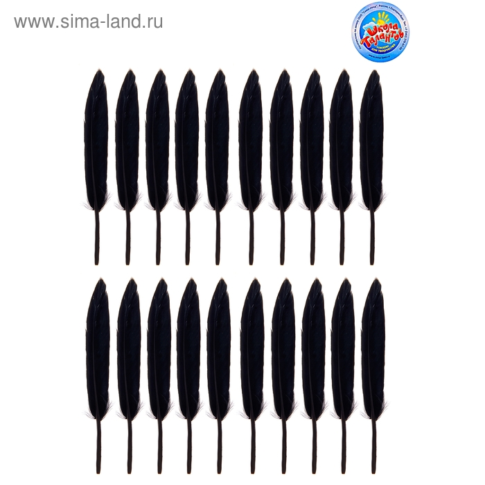 Набор перьев для декора (набор 20 шт), размер 1 шт 12*1,5*0,1, цвет черный