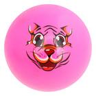 """Мяч детский """"Тигр"""", 30 г, размер 9 см, цвета МИКС"""