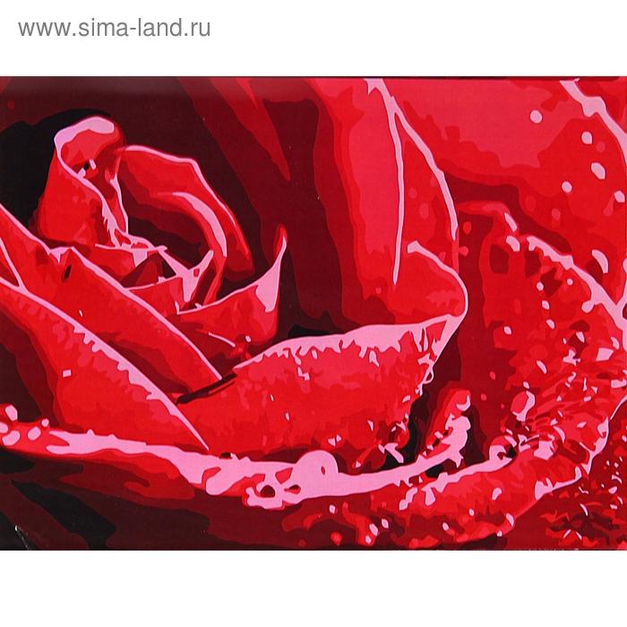 "Роспись по холсту ""Роза"" по номерам с красками по 3 мл + кисти + инструкция + крепеж"