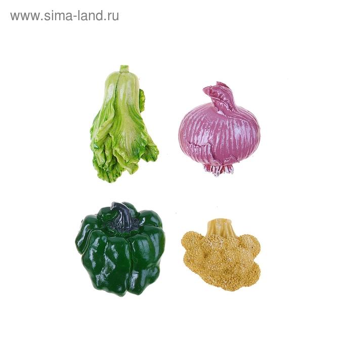 """Магнит """"Овощное рагу"""", МИКС"""