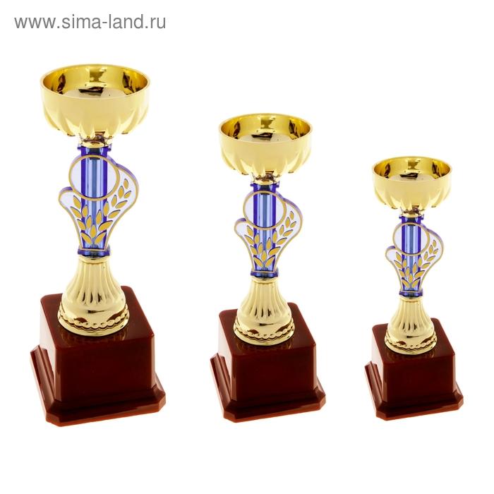 Кубок спортивный 030В