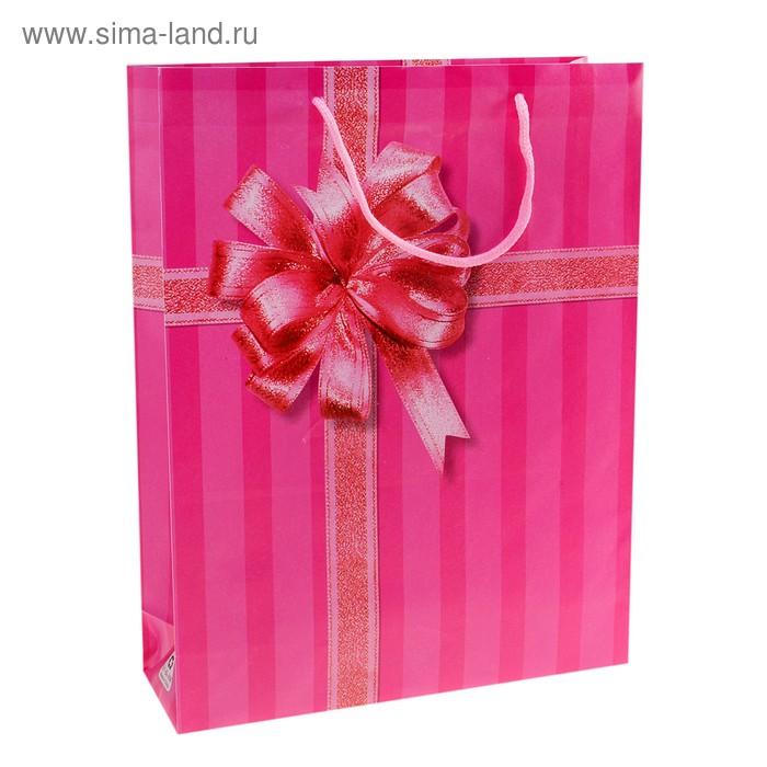 """Пакет пластиковый """"Презент"""", цвет малиновый"""