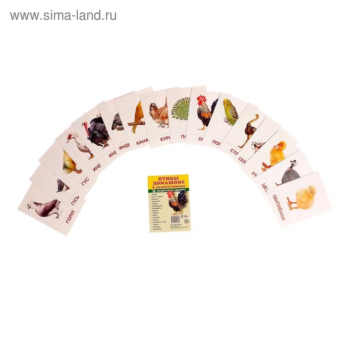 """Карточки обучающие """"Птицы домашние и декоративные"""" 16 шт. 6,3 х 8,7 см."""