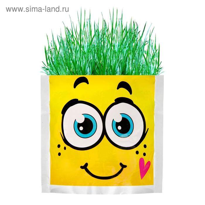 """Растущая трава """"Тосик"""", трава"""