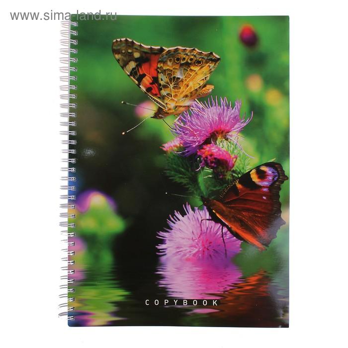 """Тетрадь А4, 96 листов клетка на гребне """"Рай для бабочек"""", УФ-лак"""