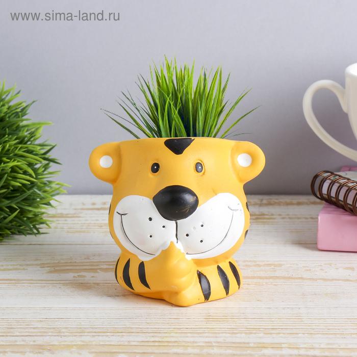"""Растущая трава """"Тигрёныш"""""""