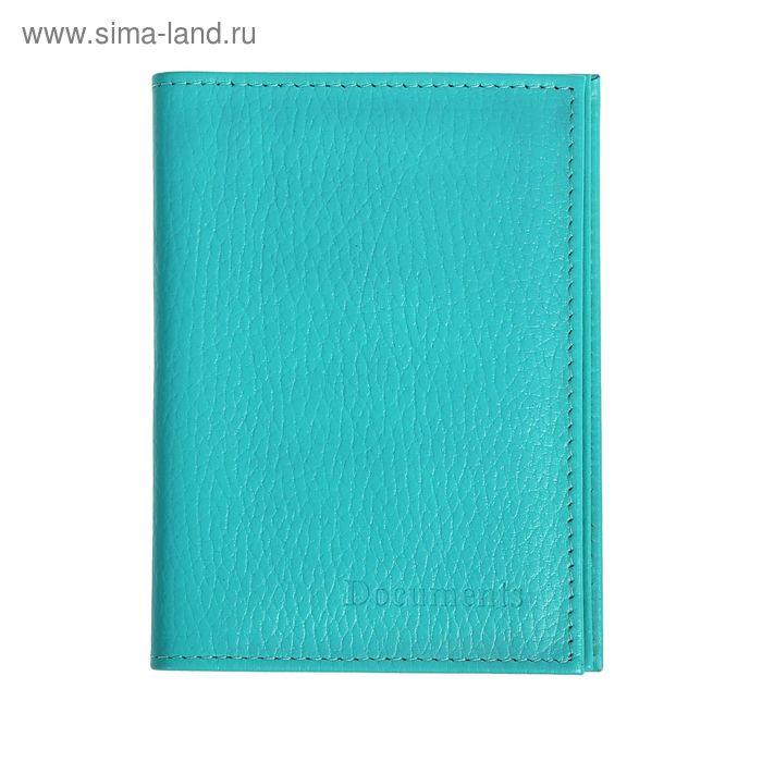 Обложка для автодокументов и паспорта, голубой флотер