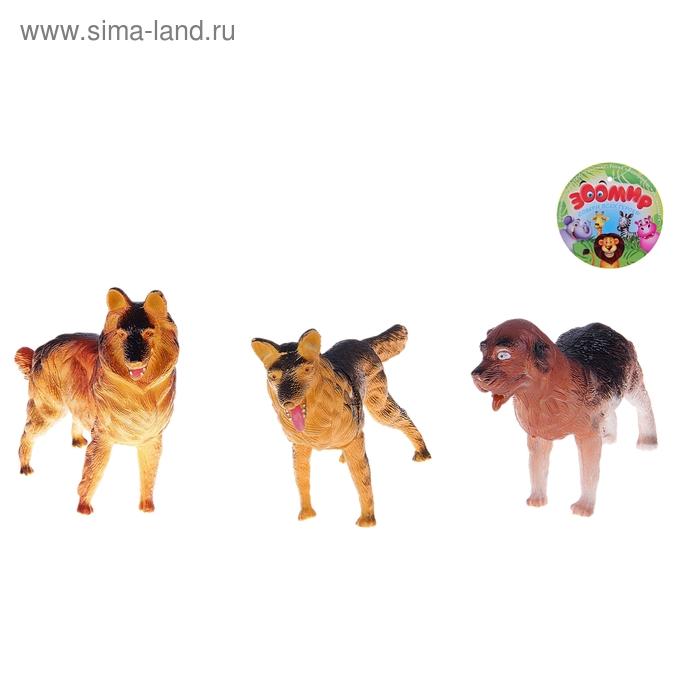 Набор собак, 3 штуки, МИКС