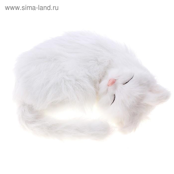 "Пушистик кот спит/храпит/дышит ""Снежок"""